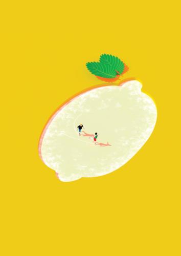 06 citron